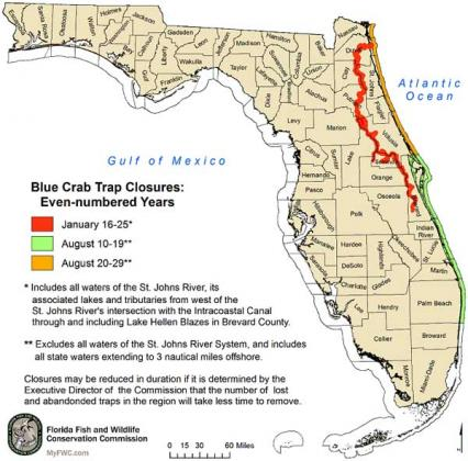 Blue crab trap closusures for even-numbered years.